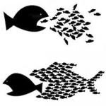El Egoismo y La Empatía – Conflicto o Balance?